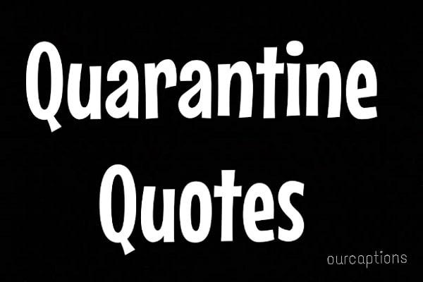 Quarantine Quotes