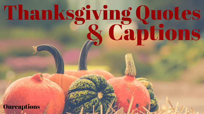 Thanksgiving Quotes & Captions